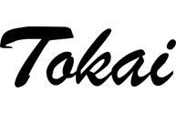 tokai guitare magasin de musique montbéliard