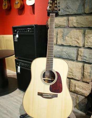 Guitare Takamine GD93 NAT